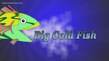 Big Cold Fish 022120