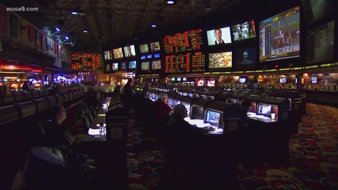 Maryland sports betting sunderland manager betting